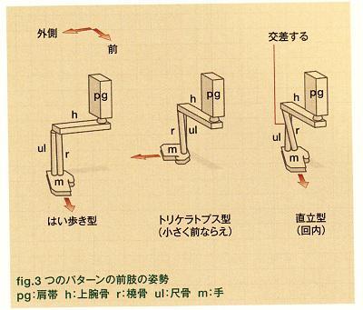 f:id:HueyAndDewey:20110821202820j:image